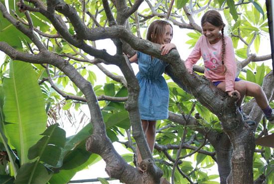 Ο ελεύθερος χρόνος των παιδιών και οι εξωσχολικές δραστηριότητες